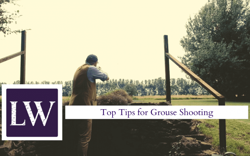 Top grouse shooting tips video