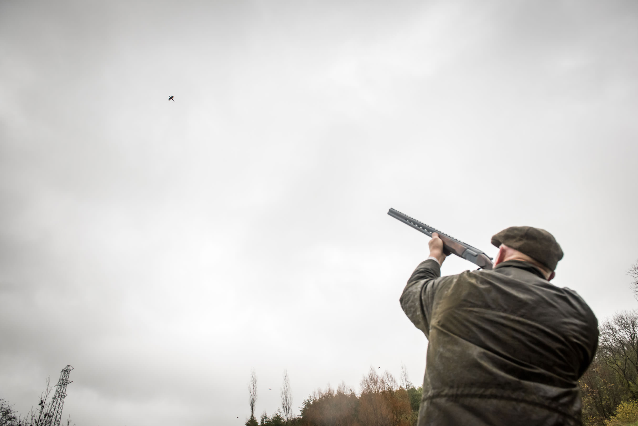 A man takes aim at a pheasant with his shotgun during a game shooting drive