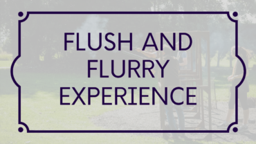Flush and flurry button