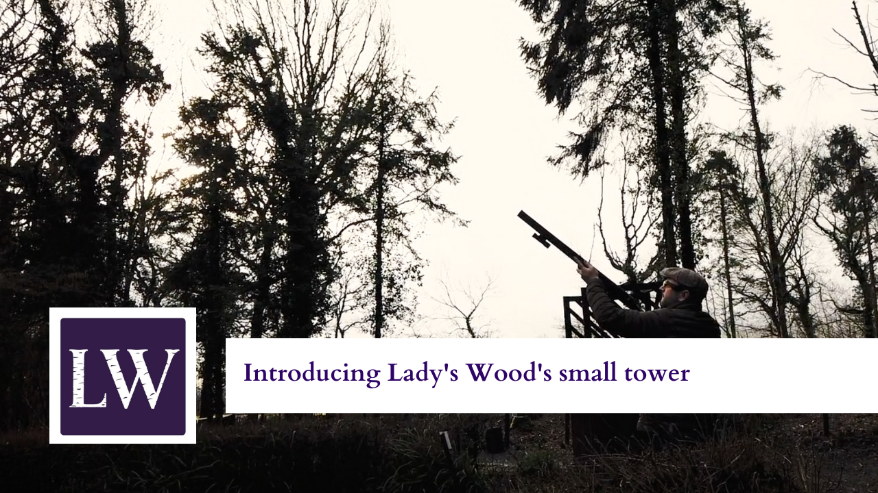 Introducing Lady's Wood small tower thumbnail